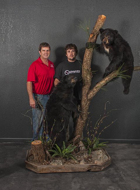 Large Mammal Taxidermy
